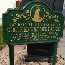 Ava Farms is a nationally certified wildlife habitat located in southern Texas